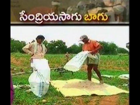 Kurnool women farmer's get grip on Organic farming   - జైకిసాన్ - on 23rd June 2015