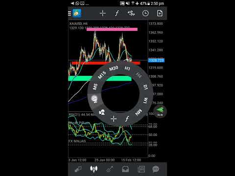 How to use MetaTrader 4 (South African Trader)