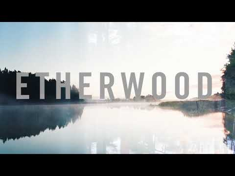 Etherwood - A Hundred Oceans (feat. FEELS)