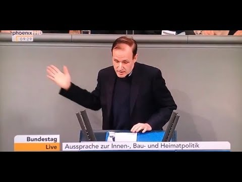Rede Gottfried Curio AfD auf Seehofer