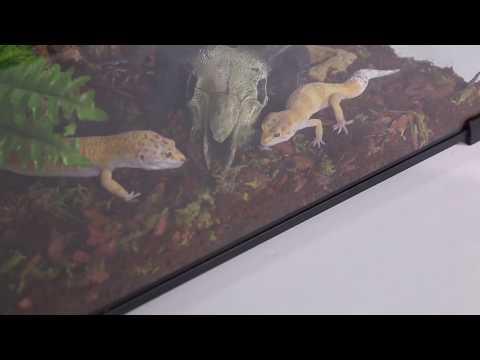 Repti Zoo Terrarium Serii Ak Youtube