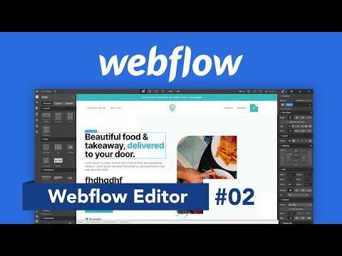 Webflow Editor: Webseite erstellen (Tutorial) Designen ohne Code