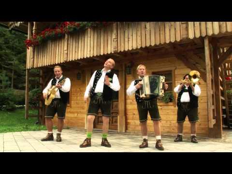 Die Edlseer - A Musikant im Trachteng wand