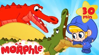 The Pet Crocodile's Tooth Pain  - Morphle Animal Videos | Cartoons for Kids | Mila and Morphle