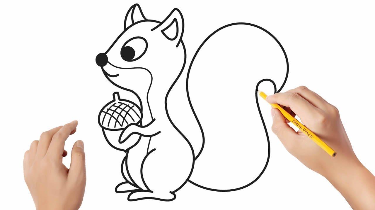 Como Dibujar Una Ardilla Dibujos Sencillos Youtube