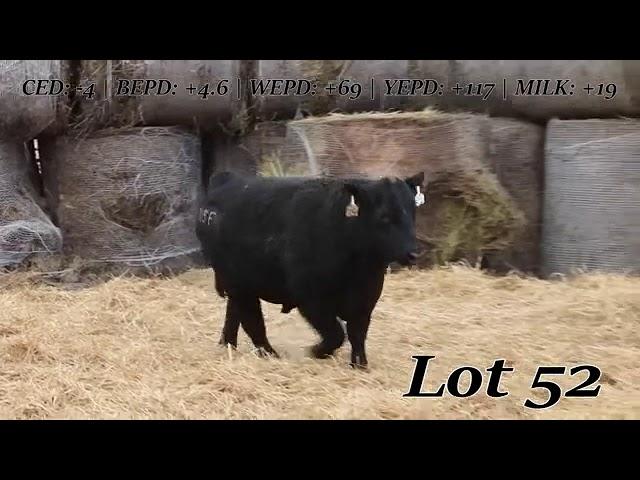 Sweiger Farms Lot  52