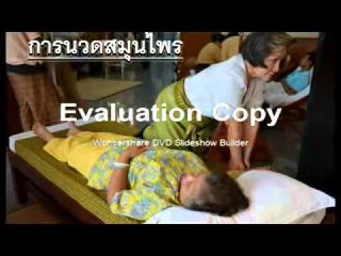 สมาคมการแพทย์แผนไทย วัดโคก จ เพชรบุรี