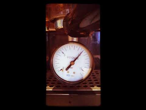 Gaggia Classic 10 bar static pressure