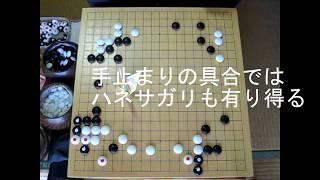 幻庵因碩『囲碁終解録』八 MR囲碁2033