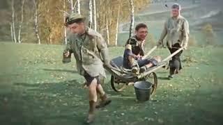 """""""Ехай на х**!"""". Украинские национал-патриоты взорвали интернет роликом с проводами Порошенко"""