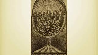 Tree of Knowledge as the Veil - 2018- Jeffrey Bradshaw