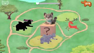 Little Kitten Preschool - Play Fun Pet Kitten Care Games - Cute Cat Animation Learning Gameplay