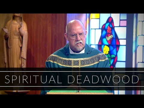 Spiritual Deadwood | Homily: Father Paul Ring