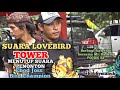Suara Penonton Ebod Joss Bird Champion Ketutup Sama Suara Lovebird Tower  Mp3 - Mp4 Download