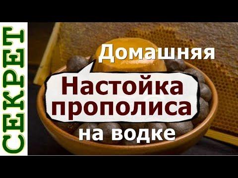 Домашняя настойка прополиса на водке - рецепт