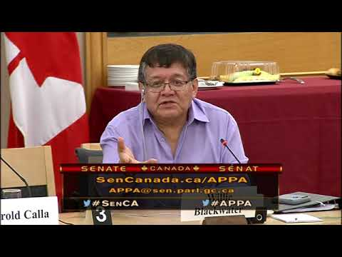 FNMPC - Standing Senate Committee with Aboriginal Peoples (Part 2)