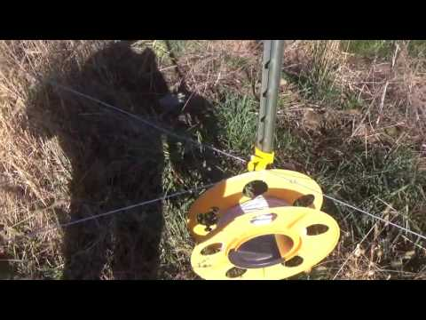 How I hook up the poly wire and talk about rotational grazing