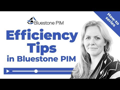 Bluestone PIM: How to work with product information more efficiently