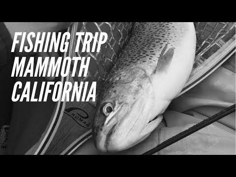 Fishing Mammoth CA