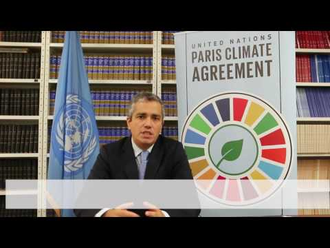 Paris Agreement: Toward entry into force explained (extended cut)
