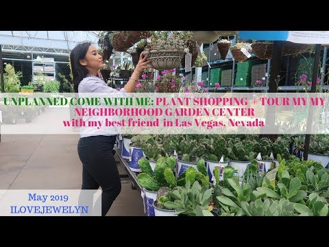 Come With Me: Plant Shopping + Tour  | Las Vegas  Garden Center | May 2019 | ILOVEJEWELYN