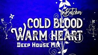 ImButcher - Cold Blood Warm Heart (Deep House Mix)