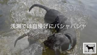 m32子供と川で遊ぶ01 thumbnail