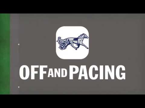 Off And Pacing: The Best Horse Racing Management Game On The Market!