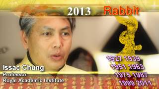 2013 Chinese new year predictions for 12 animals - rabbit