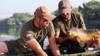NASH 2016 - CARP FISHING IN FIUME - HD
