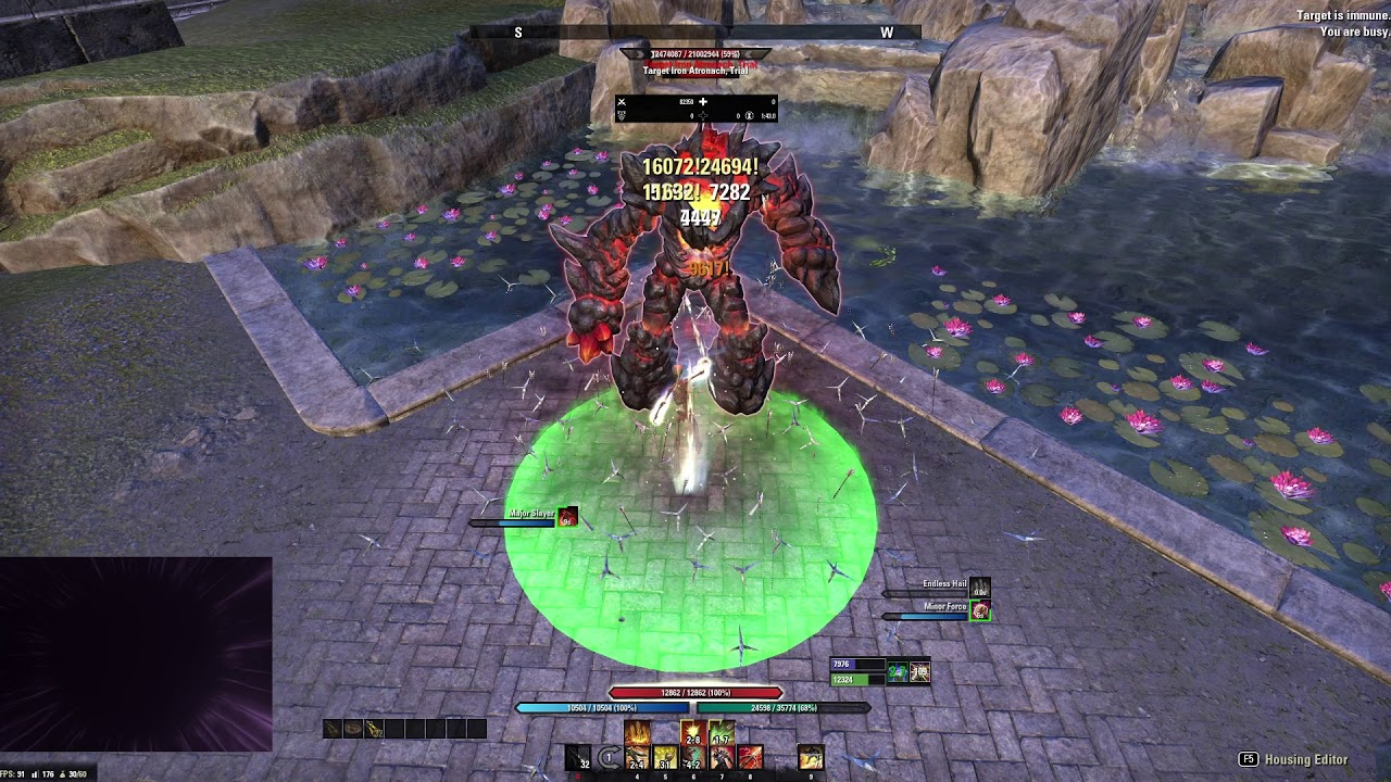 Stamina Templar Build PvE DPS for Elder Scrolls Online - AlcastHQ