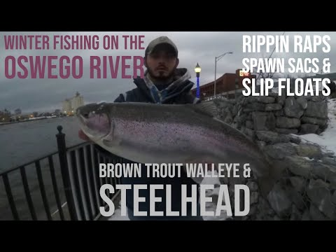 Fishing For Brown Trout, Steelhead, And Walleye On The Oswego River
