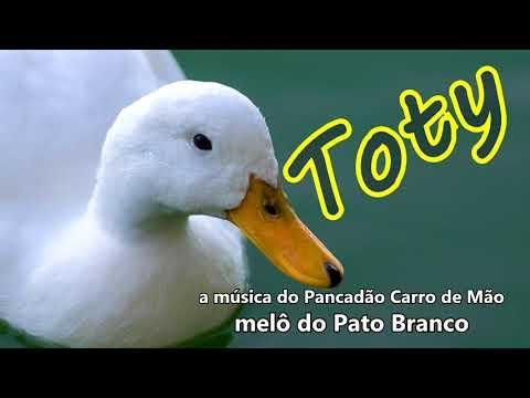 REGGAE MUSIC -  TOTY -  MELÔ DE PATO BRANCO   (a música do Pancadão carro de Mão)