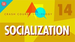 Socialization: Crash Course Sociology #14