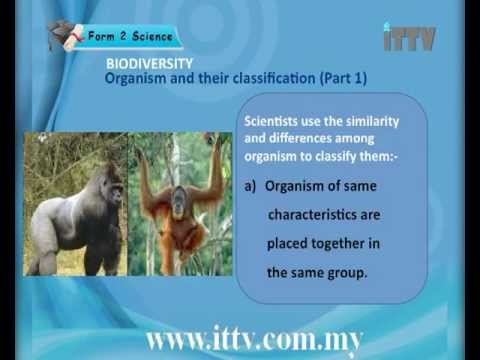 iTTV PMR PT3 Form 2 Science #3 Biodiversity (Organism and Their ...