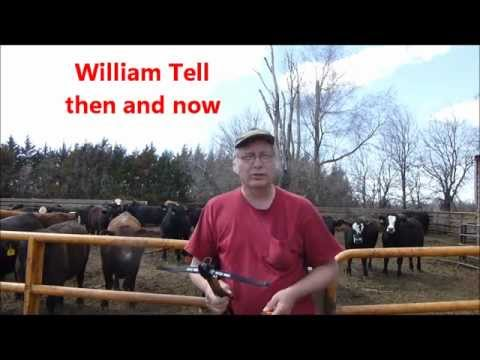 William Tell Then and Now