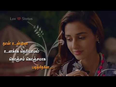 ms-dhoni-love-song-status-in-tamil