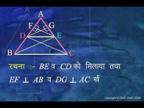 Tringle (Tribhuj)_X