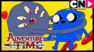 Hora de Aventura Brasil | Jake Filho Das Estrelas | Cartoon Network