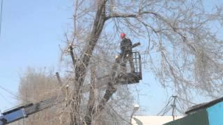 Спил деревьев с автовышки(, 2014-04-25T10:46:12.000Z)