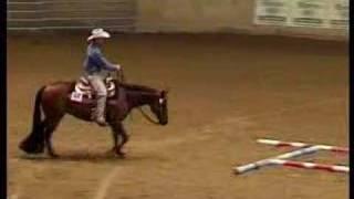 European Quarter Horse Championships 2006