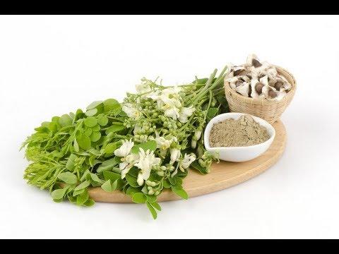 Moringa : Seulement 2 feuilles vertes tuent votre diabète