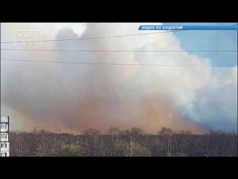 Смотреть Выгорело 200 ГА травы | Новости сегодня | Происшествия | Масс Медиа онлайн