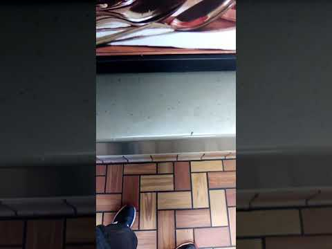 Burger King on 47th and troost is nasty