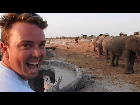 African Safari 2015