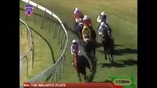 Zulu feat Mario Ramsamy  La metisse