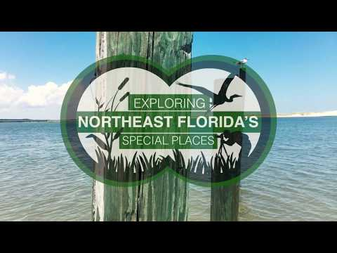 Exploring Northeast Florida's Huguenot Memorial Park