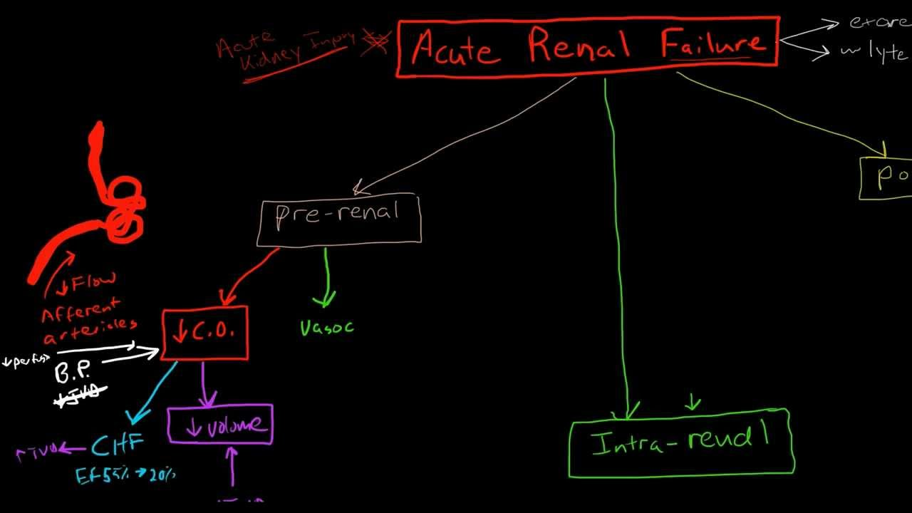 Pathophysiology of acute renal failure youtube nvjuhfo Gallery