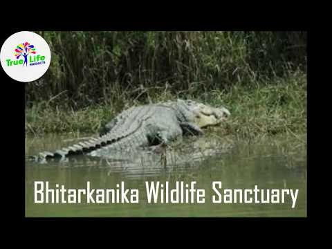 Best places of Cuttack