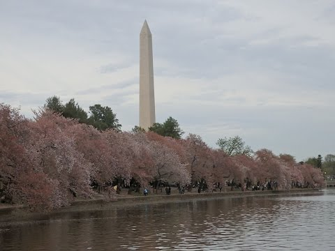 National Mall and Memorial Park-Washington DC, USA